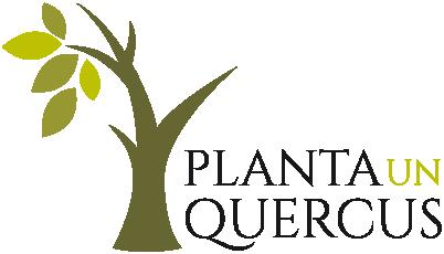 Planta un Quercus