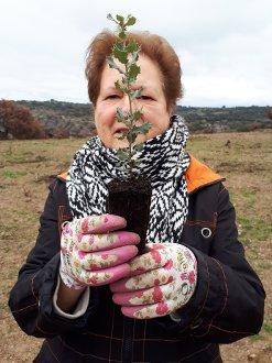Plantando árboles en Los Arribes del Duero