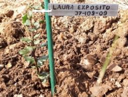37-109-09 Laura Exposito