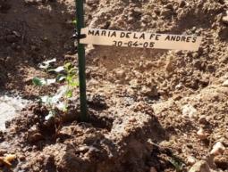 30-64-05 María de la Fe Andrés Andrés